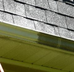 how to clean mold from roof shingles